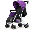 Modelos básicos púrpura