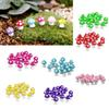 Wholesale- 10pcs Mushrooms Terrarium Figurines Fairy Garden Miniatures Party Garden Mini Mushroom Garden Ornament Resin Crafts Decorations