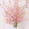6pcs Pink