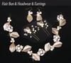 Hair Bun & Headwear & Earrings (Set)