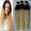 Blonde Brazilian curly Ombre 100% Human Hair Bundles 3PCS Ombre Human Hair Bundles 1b 613# Brazilian Hair Weave Bundles