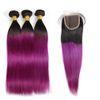 1b / recta purpura