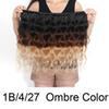 1B/4/27 Ombre Color