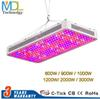 LED Grow Light 2000W 1200W 1000W 900W 600W Full Spectrum Greenhouse Grow Led Plant Lamp For Indoors 3000W double Chips