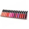 Hot Retro Matte Matte Lipsticks lip colour 15 Colors Pro MC Nude Lip Gloss Beauty Make Up