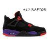 # 17 Raptor