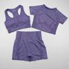 3PCS Purple Suit