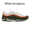 الأبيض دائم الخضرة