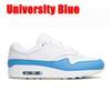 Üniversite mavi