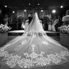 New Arrival 4M Wedding Veils With Lace Applique Cut Edge Long Cathedral Length Veils One Layer Tulle Custom Made Bridal Veil With Comb