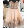 Champagne Lace Beaded Crystals 2019 Homecoming Dresses Sweetheart Tulle Graduation Dresses Vintage Cheap Party Formal Cocktail Gowns ZJ010