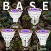 Led Grow Lights Spirited Led E27 Grow Lamp B22 Growing Light For Plants Seeds Fower Gu5.3 Led Fitolamp 220v Led Mr16 Uv Ir Bulb Lighting Hydroponics E14 Led Lighting