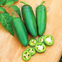 حرية الملاحة ، 100 jalapeno شيلي بذور الفلفل تزايد سريع diy الرئيسية حديقة الخضروات النباتية ، الفلفل الأكثر شعبية