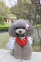 Usine en gros printemps été vêtements chien vêtements femme chien robes chiot chien beauté fleurs robes couleurs rouge et rose robes en satin