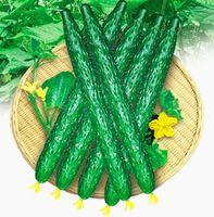 شحن مجاني 1 حزمة 200 بذور الخيار بذور كوكوميس sativus cuke ، بذور الخضروات الخضراء لوازم الحديقة