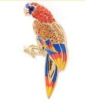 брошь комода цветастых людей попугая Диаманта ( 54mm*27mm) (xgspc)