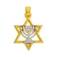 Spedizione gratuita New Fashion Facile da fare 20 * 31 mm lega ebraica rodio fede Menorah e oro David stella fascino 20 pz gioielli che si adattano per nec