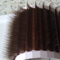 Chocolate Brown Volume lash Extension Brown Camellia Lashes ...