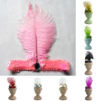 Toptan-Moda Tüy Kafa Sineklik Charleston Elbise Kostüm Headdress