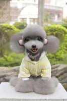 Fournitures pour animaux de compagnie en gros usine monkey dot motif chien vêtements sweat Teddy vêtements jaune et rose couleur chiot chien vêtements d'hiver