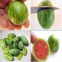 20seeds / bag 네덜란드 수입 슈퍼 작은 수박 수박 씨 발코니 미니 수박 살 과일