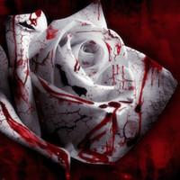 150 씨앗 희귀 한 흰 피 장미 식물 꽃 씨앗 꽃밭 아사카 희귀 한 진실한 피 장미 종자