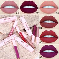 6 färger matt läppstift rosa rör non-stick cup 4ml läppglans kvinnor makeup märke läpp pinnar med paketet