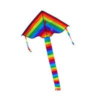 Bunter Regenbogen-Drachen-langer Schwanz-Nylon-Drachen im Freien, der Spielwaren für Kinder Kinderbremsungs-Drachen-Brandung ohne Kontrollstange und -linie fliegt