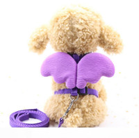 Cute Angel Pet Supplie Dog Leashes and Collars Set Puppy Lea...