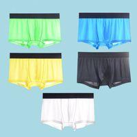 5 stücke Mesh Boxer Shorts Unterwäsche Kühle Eis Seide Männer Boxer Unterhosen Super Atmungsaktive Männer Sexy Slim Mann Höschen Transparent