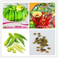 1 pacote de pacote Original quiabo / gumbo Bonsai sementes vegetal muito pesado Atlântico gigante plantas hortícolas Alimentos Orgânicos Para Casa Garden NO81