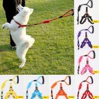 Pet Traction Rope Chest Straps Cats Dogs Leashes With Harnes...