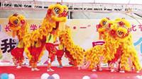 Bambini giorno Leone Dance Mascot Costume Puro lana Southern Bambini diurno giorno Compleanno apertura di nozze Parade Stage Outdoor Folk cinese