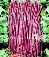 50 Pcs Bean vegetable For Home and Garden Outdoor bonsai Plant seeds, Gold hook oil bean Bonsai, organic vegetable germination rate of 95%