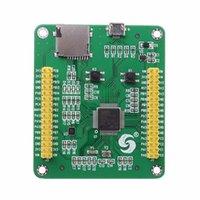 Бесплатная доставка STM32 STM32F405RGT6 STM32F405 USB IO Core Разработка макетов MicroPython Интегральные схемы