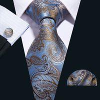 Hızlı Kargo Ipek Kravat Set Gökyüzü Mavi Bordo Paisley erkek Toptan Jacquard Dokuma Kravat Cep Kare Kol Düğmeleri Düğün Business N-5057