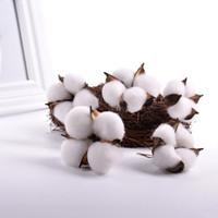 10PCS artificial seco Plantas de flores Fotografía de la celebración de días Puntales hogar de la boda de algodón natural bolas de colores Bolas de algodón