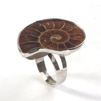 10 قطع العصرية الفضة مطلي researabable البنصر الشكل غير النظامية ammonite reliquiae للهدايا الأزياء والمجوهرات