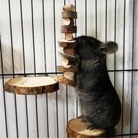 الحيوانات الأليفة مضغ لعبة أبل خشبية الأسنان طحن لعب للهامسون شينشيلا الحيوانات الصغيرة الأسنان مضغ لعب قفص الملحقات