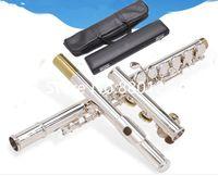 العلامة التجارية الناي أداة 471 211 271 312 411 متعددة نموذج الفضة 16 17 هول الثقوب مفتوحة أو مغلقة ذات جودة عالية مع القضية