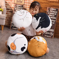 Creative Cartoon Cat Pillow Round Cushion Cat Pillow Sleepin...