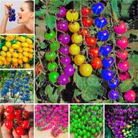 24 arten Nahrhaft Tomaten Samen Selten Riesige tomaten samen Bonsai Bio Gemüse obst samen Topfpflanze für Hausgärten 100 Stücke