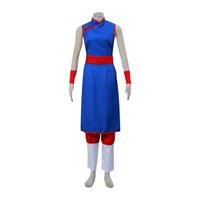 Dragon Ball Chichi Uniforme Outfit Costume Cosplay