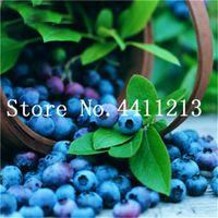 200 pcs amerikanska jätte blåbärsfrukt bonsai växtfrön, utomhus bonsai träd, sällsynt fruktträdet för hemträdgårdsplantering, spiring 95%
