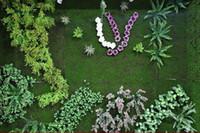 Декоративные Цветы Венки 10 квадратных метров Искусственный Зеленый Мосс Травяной Мат Растения Искусственные газоны Турэ Ковры для Садового Домашние вечеринки Украшение