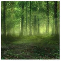 5x7FT Vinyl Studio Backdrop Photography Prop Foggy Forest Ph...