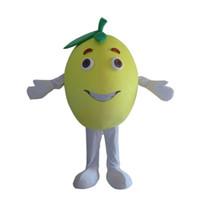2019 Yüksek kaliteli Meyve Greyfurt Kostüm Kıyafetleri Yetişkin Kadın Erkek Karikatür Maskot kostüm Karnaval Festivali Ticari Faaliyet Için