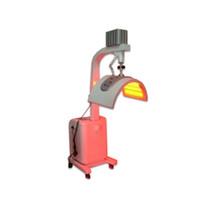 7 가지 색상 수직 PDT 기계 LED 테라피 가장 큰 치료 영역 PDT 공장 가격