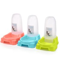 Small pets in automatic pet feeder, automatic feeder and wat...