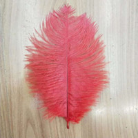 "15- 20cm 6- 8"" Natural Goose Feathers Plume Wedding Cente..."